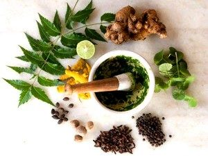 male-enhancement-pills-natural-ingredients